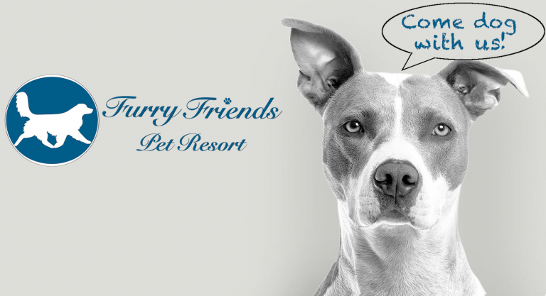 Furry Friends Pet Resort